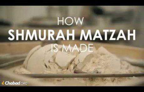 How Shmurah Matzah is Made